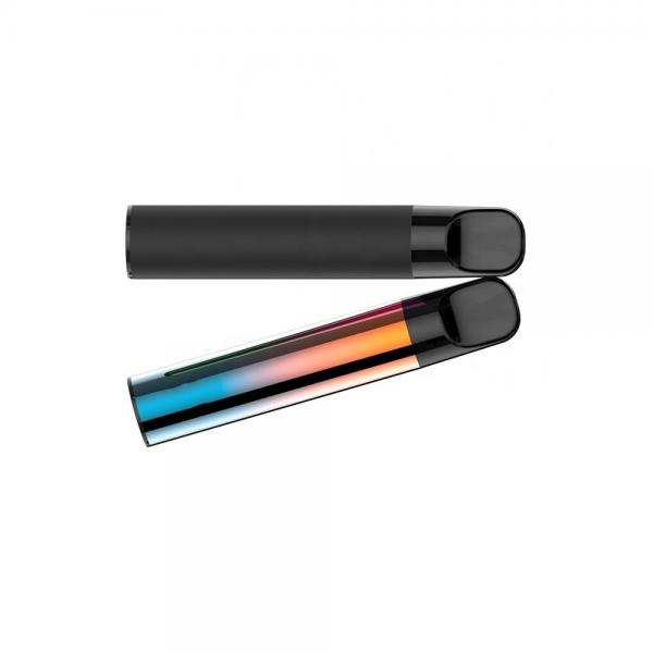 Disposable Vape Pen 320mAh Thick Oil Disposable Vape Pen from Sinhigh